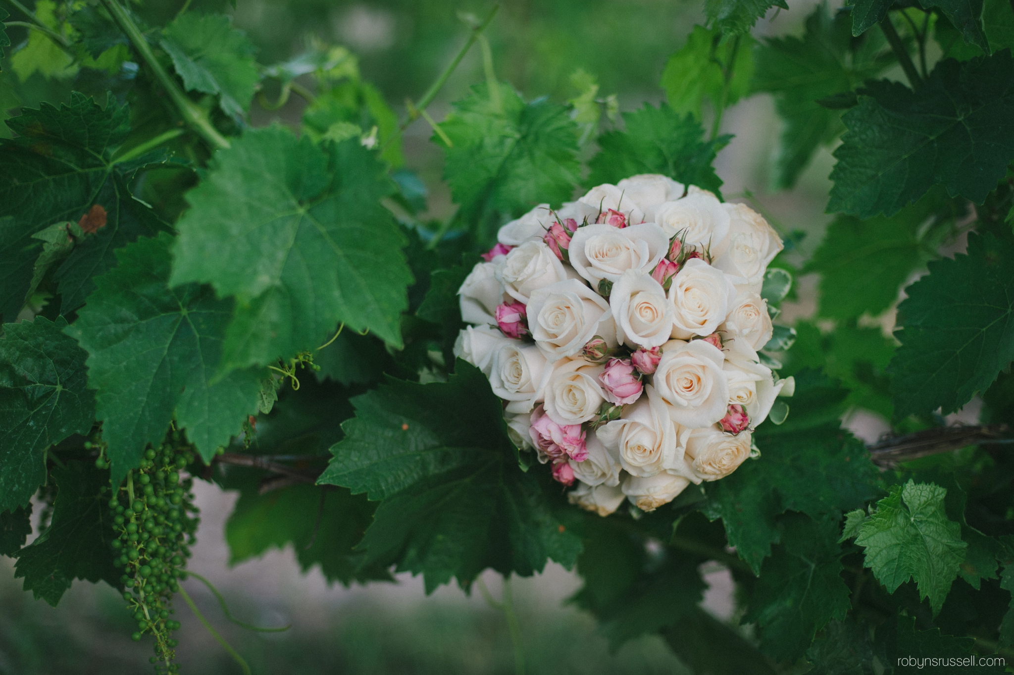 38-bridal-bouquet-roses-hernder-grapevine.jpg