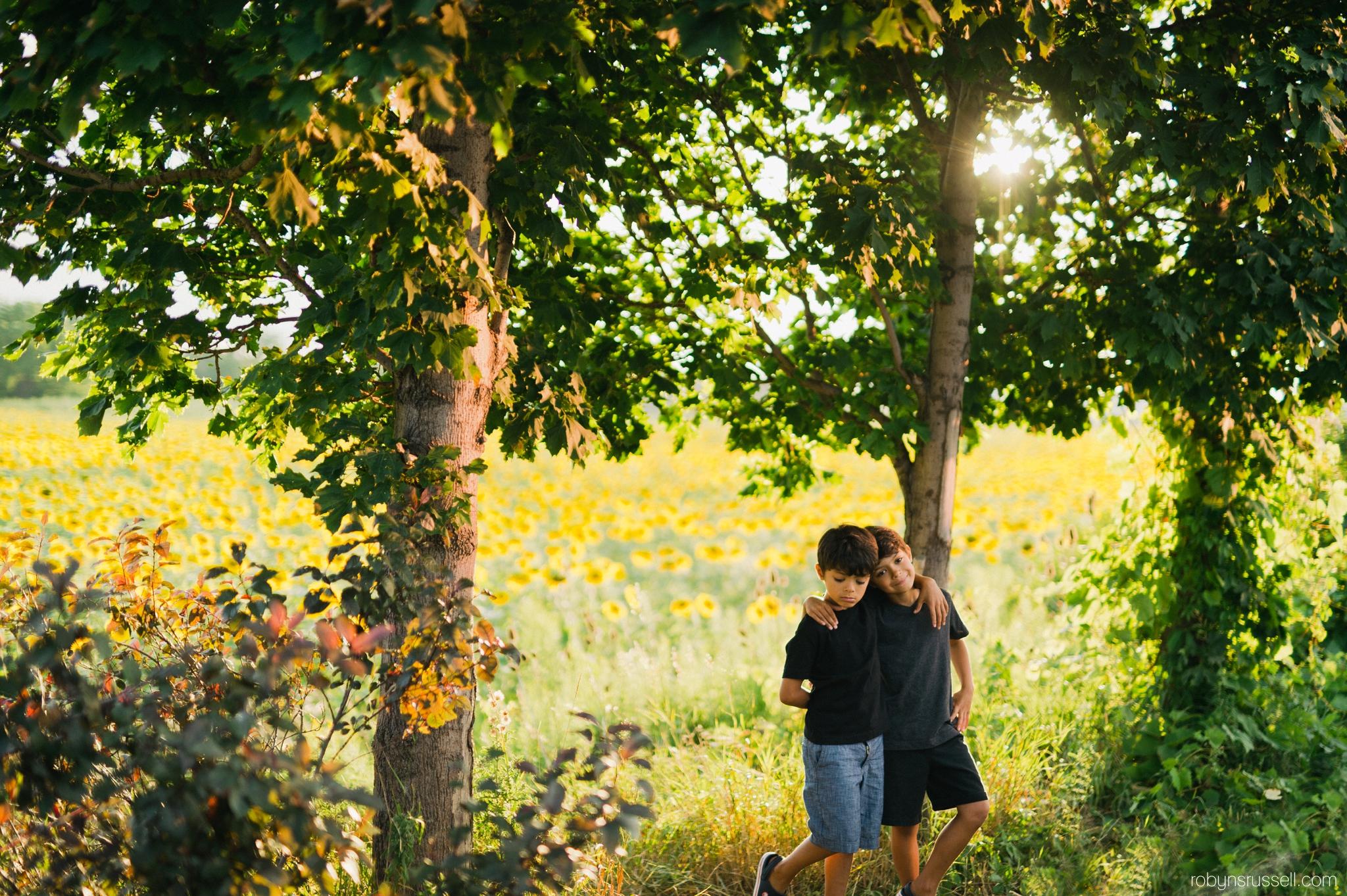 boys in sunflowers in burlington